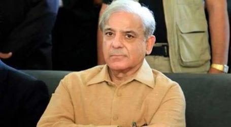 وفاقی کابینہ نے شہباز شریف کا نام ایگزٹ کنٹرول لسٹ میں ڈالنے کی منظوری دیدی