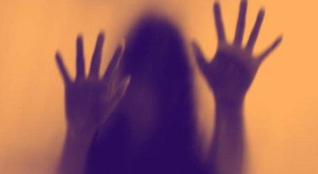 نوکری کا جھانسہ دیکر ٹک ٹاکر سے زیادتی کا ملزم ریمانڈ پر پولیس کے حوالے