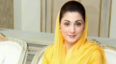 PML-N Vice President Maryam Nawaz joins Instagram