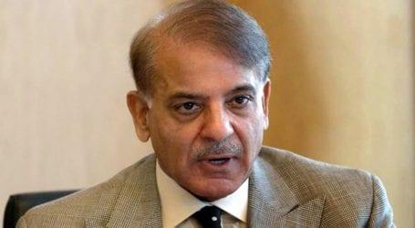 Preparations made to shift Nawaz for London: Shehbaz Sharif