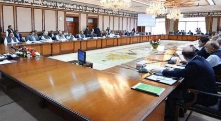NEC meeting to be summoned on Aug 29