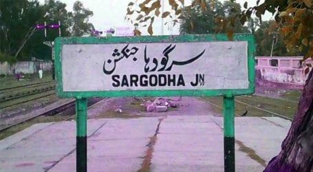 7 family members killed over domestic dispute in Sargodha