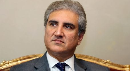 JUIF's Azadi March is diverting attention from Kashmir issue: FM
