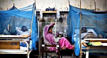 More 300 dengue cases filed across nation in 48 hours