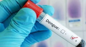 Dengue claims another life, raising death toll 42 in Islamabad