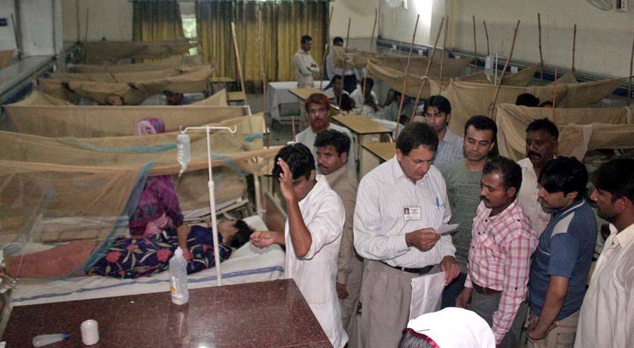 Dengue virus claims another life in Rawalpindi
