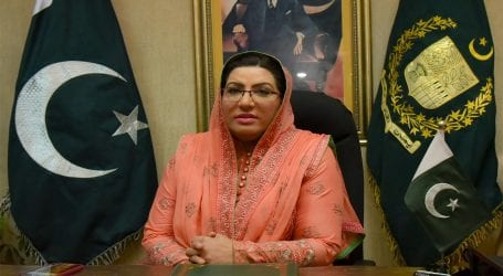 Kashmir is Pakistan's jugular vein: Firdous Awan