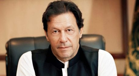 PM Imran meets members of Kashmir study group in US