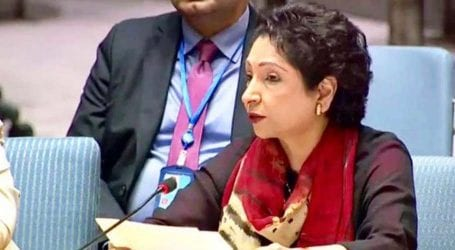 FO dispels notion Maleeha Lodhi was removed as UN envoy