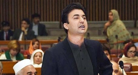 NAB is an independent institution: Murad Saeed