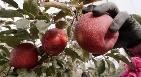 Senate meeting discuss ways to stop fruit smuggling