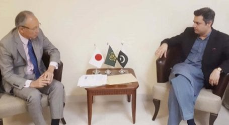 Minister discusses economic cooperation with Japanese envoy