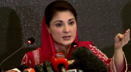Maryam Nawaz files bail petition referring illness of father