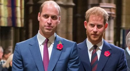 "Prince Harry and Prince William are ""on different paths"""