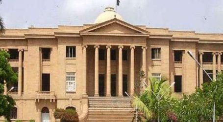 SHC summons KMC, health dept over stray dogs issue