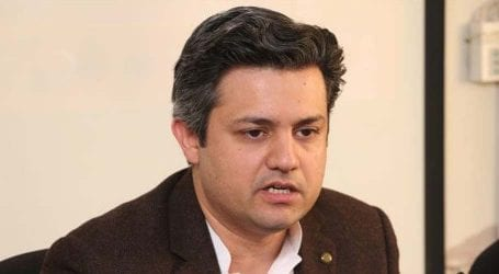 Govt returned around $10.5 billion loans: Hammad Azhar
