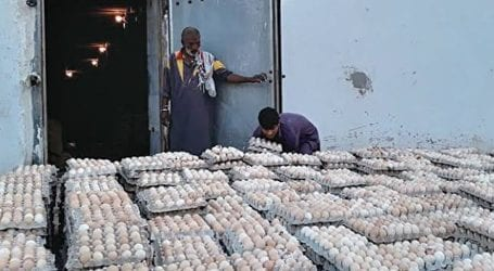 Four arrested for selling fake plastic eggs in Karachi