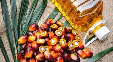 India mulls curbing Malaysian imports over IOK criticism