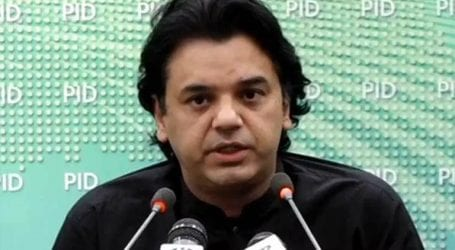 Kamyab Jawan program loans to be disbursed from Dec: Usman Dar