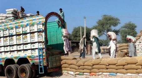 ECC directs release of 650,000 tonnes wheat to three provinces