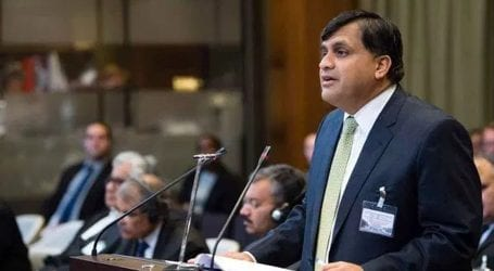 India must allow media to observe IoK's situation: FO