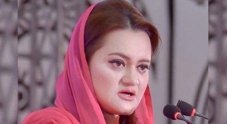 Don't seek any relief from 'selected govt', says Marriyum Aurangzeb