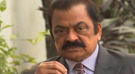 CNS extends Rana Sanaullah's judicial remand for 14 days
