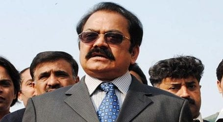 ANC dismisses Rana Sanaullah's bail plea in drug case