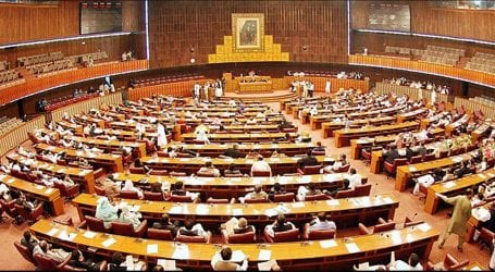 NA forms committee for repatriation of overseas Pakistanis