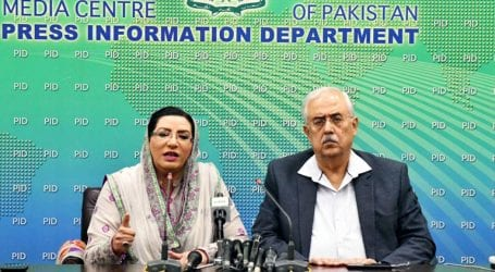 Govt respects decision of the court, says Firdous Awan