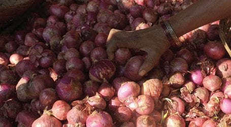 Bangladesh imports onions on urgent basis as prices soar