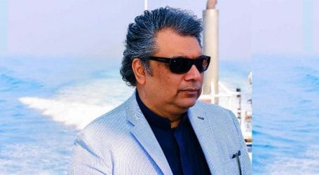 Those who are out of jail on bail will be brought back soon: Ali Zaidi