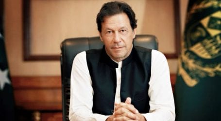 Govt will provide all facilities to farmers in agriculture, says PM