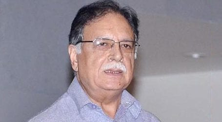 Govt is sending its political opponents to jail: Pervez Rasheed