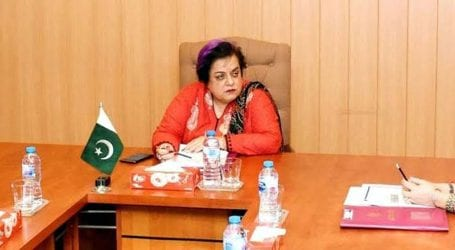 India has become a racist state due to its new law: Mazari