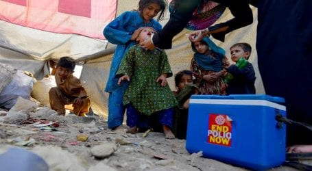 Fourteen polio cases reported this year in Sindh
