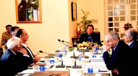 PTI govt's economic policies brought stability in Pakistan: PM