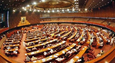 NA passes resolution against Indian 'anti-Muslim' bill
