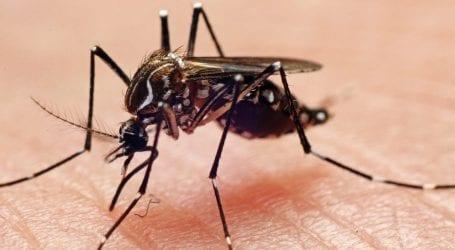 1,300 workers get training to eliminate dengue in Rawalpindi