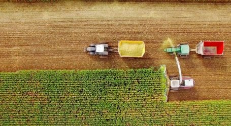 15 Weirdly Interesting Facts About Farming You Must Know