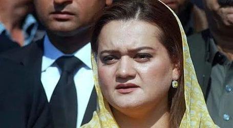 Bogus treason cases being framed against PML-N: Marriyum Aurangzeb