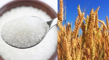 After wheat, a sugar crisis is now looming