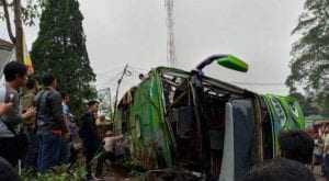 At least 8 killed, 30 other injured in Indonesia's bus crash