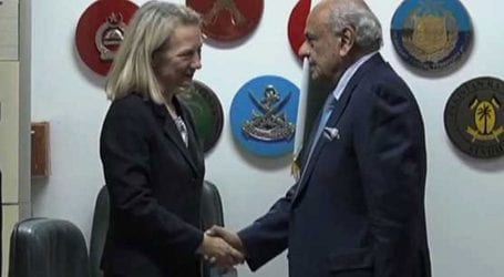 Alice Wells meets Ijaz Shah, discuss national, regional security