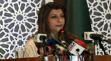 Pakistan to play role for regional peace, stability: FO
