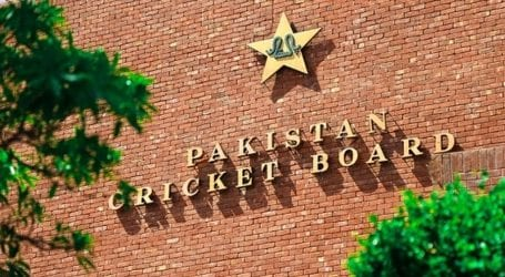 PCB confirms bookie approached player during National T20 Cup