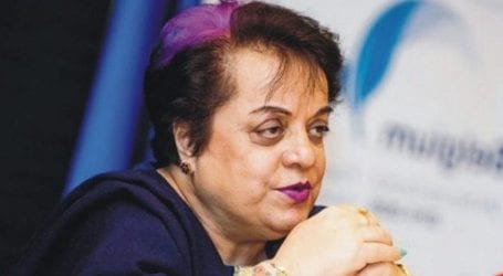 Thankful to those who helped get Zainab Bill approved: Mazari