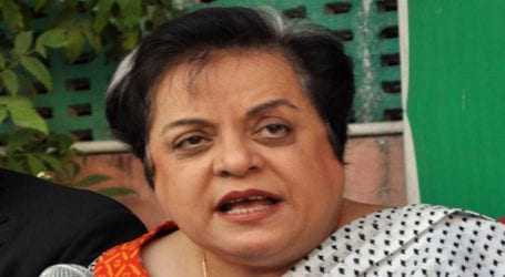 Women have made nation proud on all fronts: Shireen Mazari