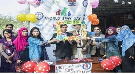 'World Spay Day' observed at Veterinary & Animal Sciences University Lahore