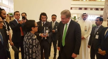 Indonesia lauds Pakistan's role in facilitating Afghan peace process